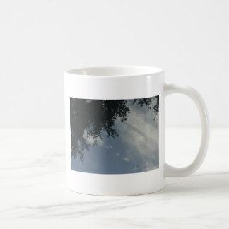 The Sun Shines Through Coffee Mugs