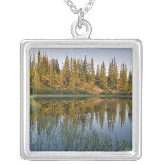 The sunrise illuminates trees on an unnamed square pendant necklace