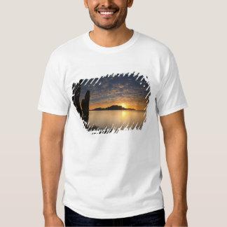 The sunrise over Isla Danzante in the Gulf of Shirts