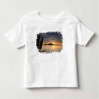 The sunrise over Isla Danzante in the Gulf of T Shirt