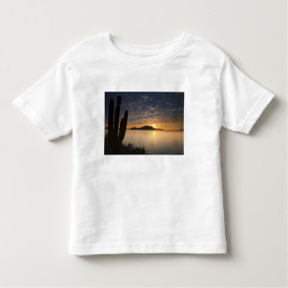 The sunrise over Isla Danzante in the Gulf of Toddler T-Shirt