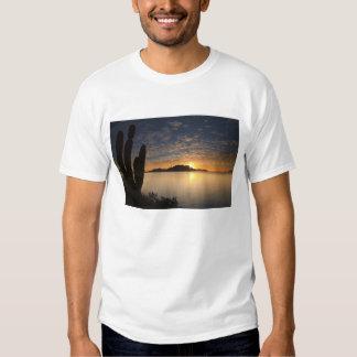 The sunrise over Isla Danzante in the Gulf of Tshirts