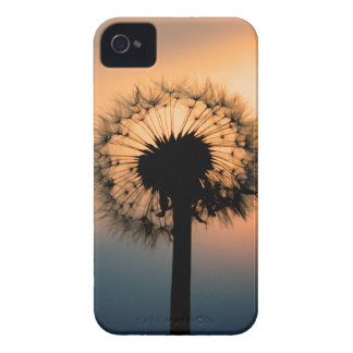 The Sunset and the Fragile Dandelion iPhone 4 Case