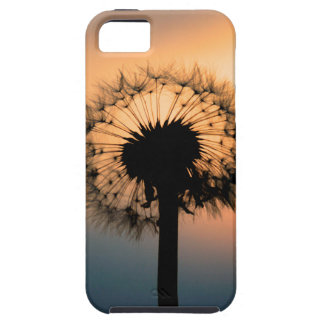 The Sunset and the Fragile Dandelion iPhone 5 Cover