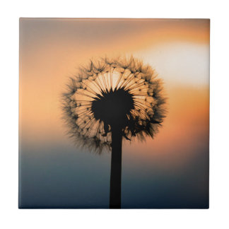 The Sunset and the Fragile Dandelion Small Square Tile