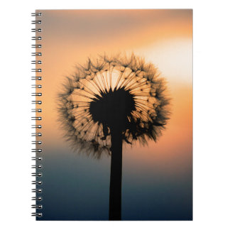 The Sunset and the Fragile Dandelion Spiral Notebooks