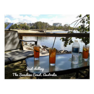 The Sunshine Coast Australia Just chilling Postcard