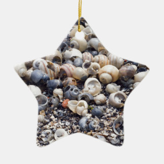 The surface of the sea coast with blur background ceramic star decoration