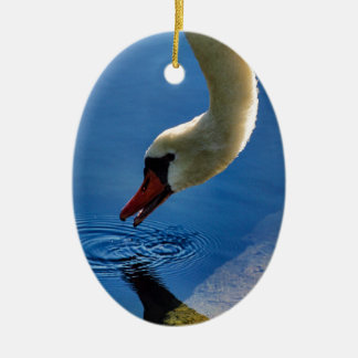 The Swan Takes a Sip Ceramic Oval Decoration
