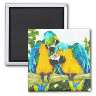 The Sweet Spot - Blue & Gold Macaws Square Magnet