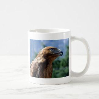 The tamed falcon mugs