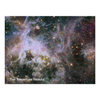 The Tarantula Nebula - Frame 4 With Title Poster