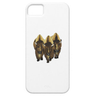 The Three Amigos iPhone 5 Cases