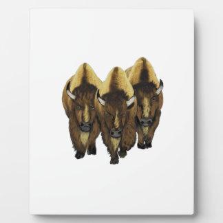 The Three Amigos Plaque