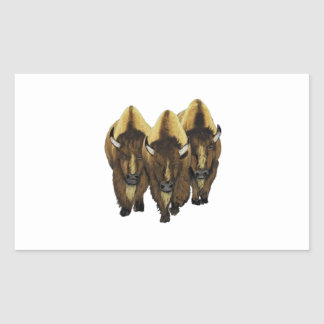 The Three Amigos Rectangular Sticker