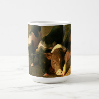 The Three Little Pigs Coffee Mug