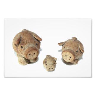 The Three Little Pigs Photo Print