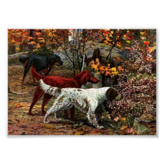 The Three Setters Canvas Print