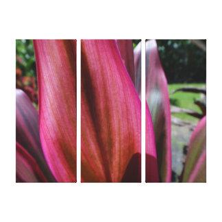 The Ti Leaf Gradation Canvas Print