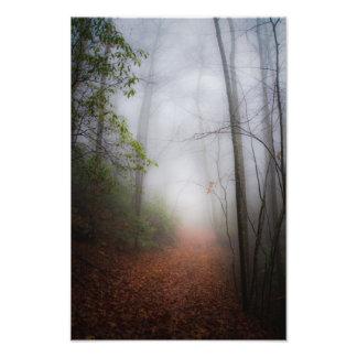 The Trail Photo Print