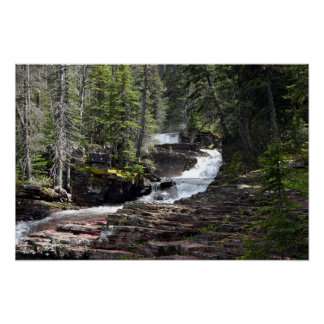 The trail to Virginia Falls, Glacier Park MT. Poster