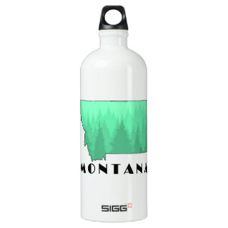 The Treasure State Water Bottle