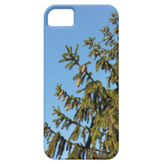 The Tree for Christmas Case For The iPhone 5