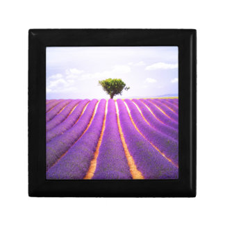 The tree in the lavender gift box