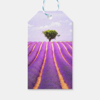 The tree in the lavender gift tags