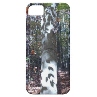The Trees Have Eyes! iPhone 5 Covers