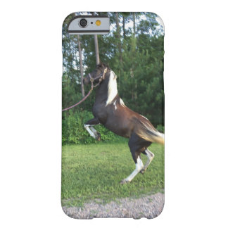 The Trick Pony Barely There iPhone 6 Case