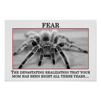 The True Meaning of Fear (S) Posters