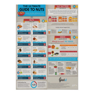The Ultimate Guide To Nuts - Infographic Poster