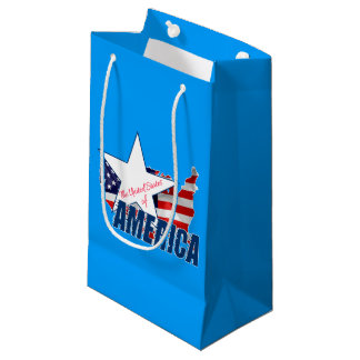 The United States Of America 4th of July Small Gift Bag