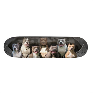 The Untouchables - Pitbull Champion Series 21.6 Cm Skateboard Deck