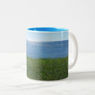 The Vacation Souvenir Mug | Perfect for a Gift