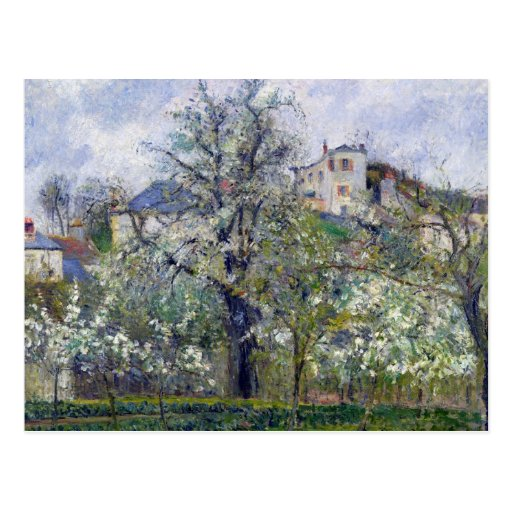 The Vegetable Garden with Trees in Blossom Postcards