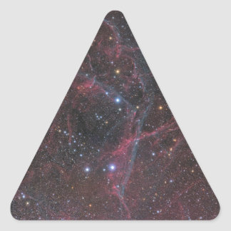 The Vela Supernova Remnant Triangle Sticker
