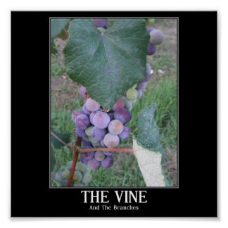 The Vine Poster