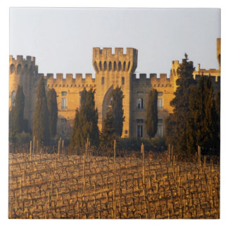 The vineyard with syrah vines and the chateau large square tile