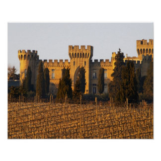 The vineyard with syrah vines and the chateau poster