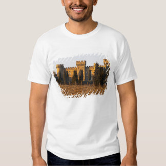 The vineyard with syrah vines and the chateau shirts