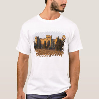 The vineyard with syrah vines and the chateau T-Shirt