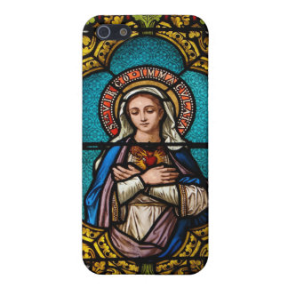 The Virgin Mary iPhone 5/5S Case