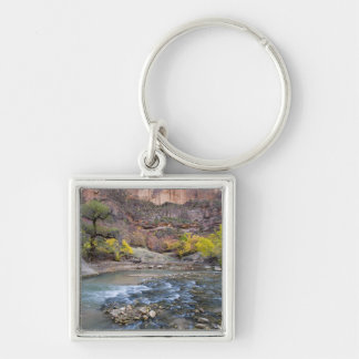 The Virgin River in autumn in Zion National Park Silver-Colored Square Key Ring