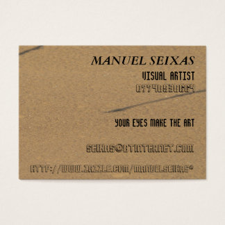 The Visual Artist
