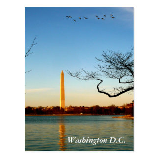 The Washington Monument Postcard