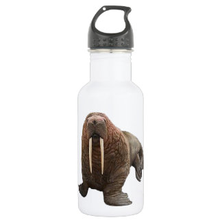 THE WATCHFUL WALRUS 532 ML WATER BOTTLE