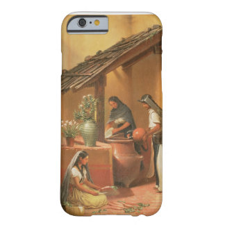 The Water Place (Tortugo) Barely There iPhone 6 Case