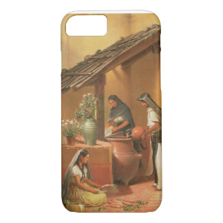 The Water Place (Tortugo) iPhone 7 Case